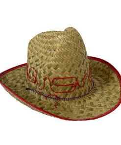 Lier - Carnaval - Western - cowboys - cowgirl - hoed - themafeest - western hoofddeksel - volwassenen - kinderen - country