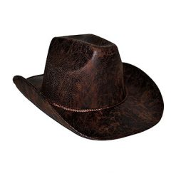 Lier - Carnaval - Western - cowboys - cowgirl - hoed - themafeest - western hoofddeksel - volwassenen - kinderen - bruin