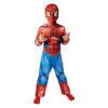 Carnaval kostuum kind - Lier - verkleedkledij kinderen - Marvel - filmfiguur - tv figuur - spiderman kostuum - onesie - spin