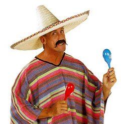 Lier - Carnaval - Halloween - Western - historisch - hipster - cowboy - viking - musketier - politie - mexicaan - nep snor