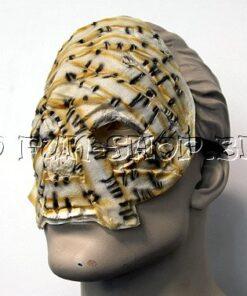 Halloween kostuum - Lier - verkleedkostuum - verkleedkledij volwassenen - griezelen - sarcofaag - mummie - egypte