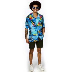Hawaihemdblauw 2