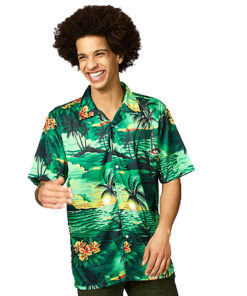 Hawaihemdgroen 2