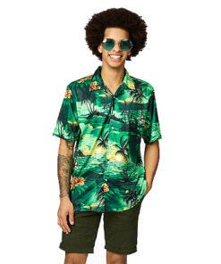 Hawaihemdgroen 3