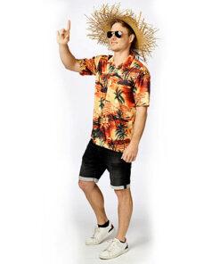 Hawaihemdoranje 2