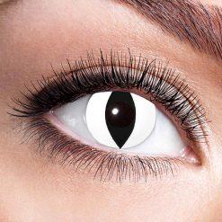 Lier - Carnaval - Halloween - contactlenzen - kleurlens - party lens - gekleurde lenzen - kattenoog - slangenoog - eye - wit