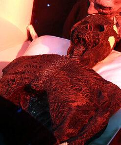 griezelen - sarcofaag - mummie - egypte - Halloween decoratie - accessoire - Lier - griezelige mummy
