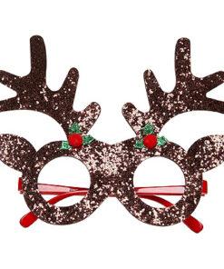 Lier - Kerstmis - themafeest - Merry Christmas - Kerstmuts - grappige bril - kerstfeest - rendier