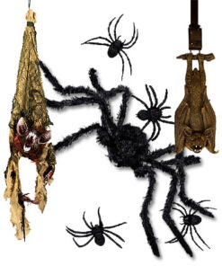 Spinnen & Ongedierte