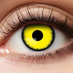 12-Maand Kleurlenzen Angelic Yellow