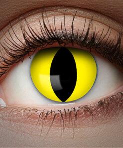Lier - Carnaval - Halloween - contactlenzen - kleurlens - party lens - gekleurde lenzen - kattenoog - lichtgevend oog - blacklight