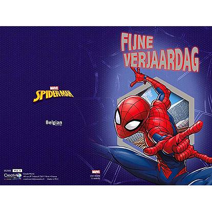 Spidermanverjaardag 2