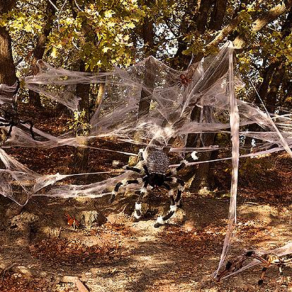 Halloween Decoratie - Lier - decoratie - griezel - decor - decoratie - spinnen - Fun-Shop - Carnaval - spinnenweb - spider